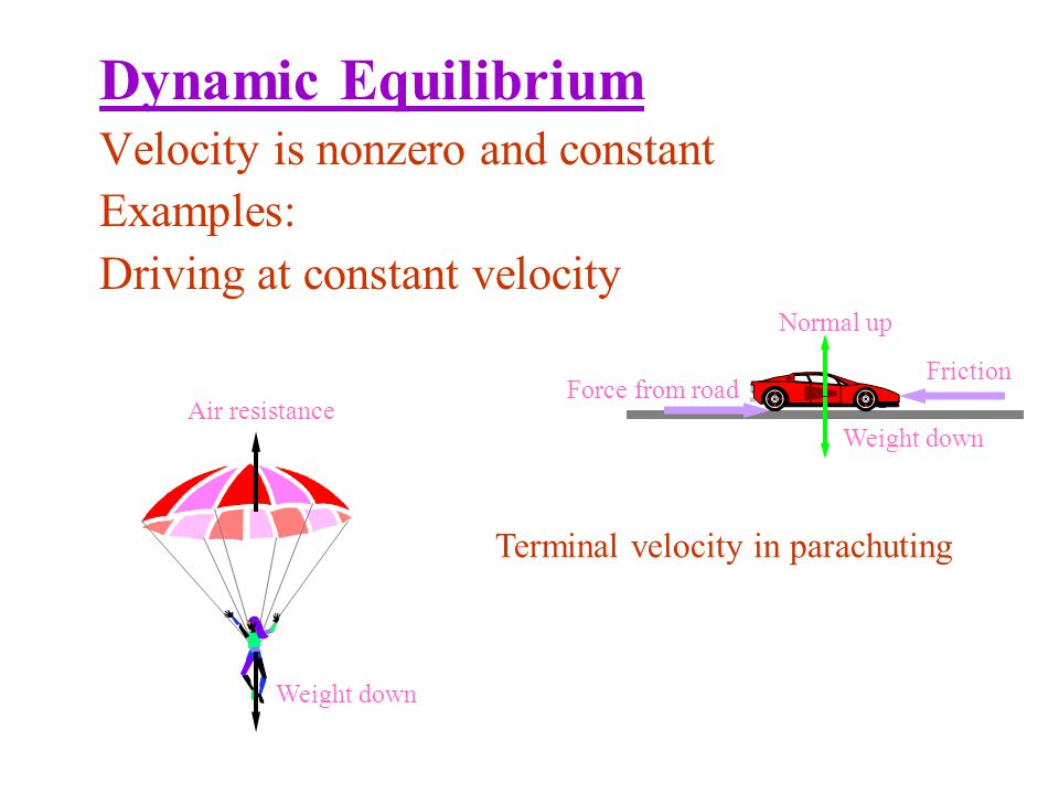Dynamic Equilibrium Velocity is nonzero and constant Examples: