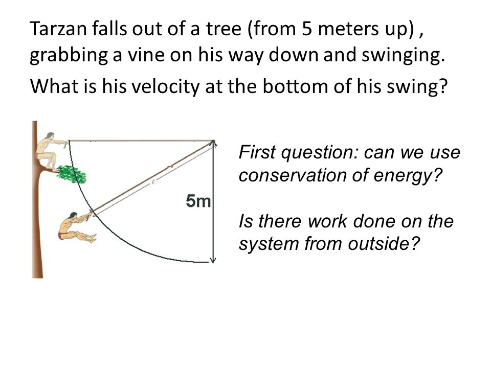 Tarzan falls out of a tree (from 5 meters up) , grabbing a vine on his way down and swinging. What is his velocity at the bottom of his swing