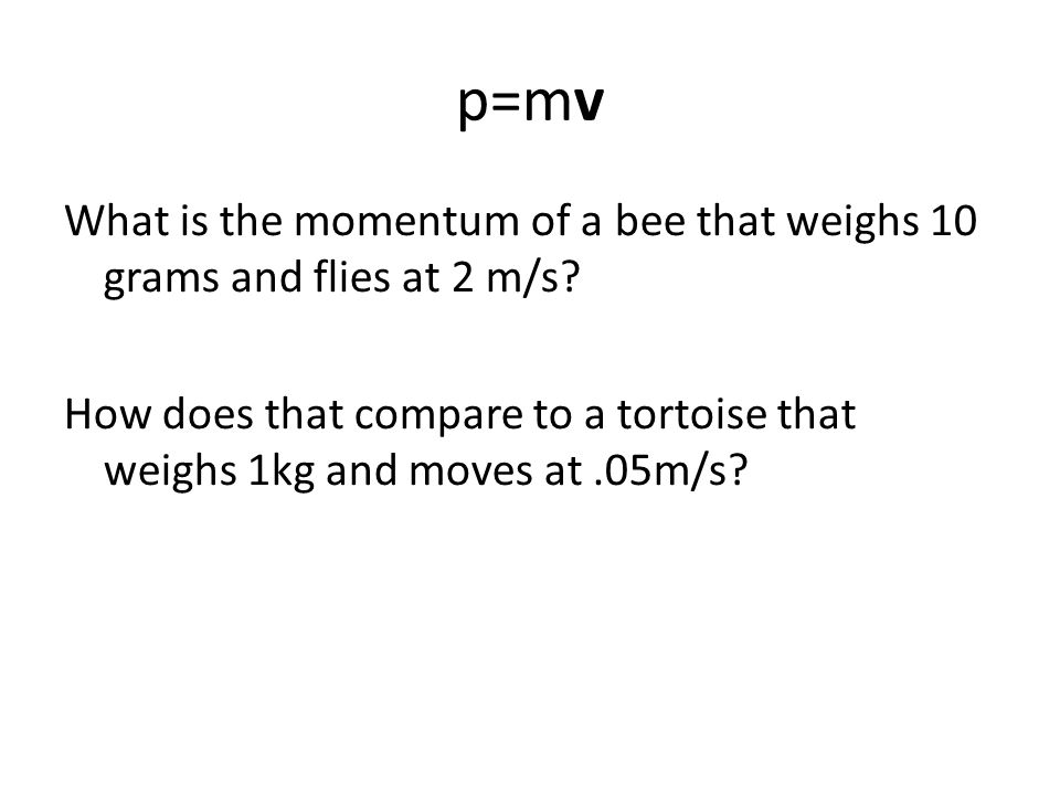 p=mv What is the momentum of a bee that weighs 10 grams and flies at 2 m/s