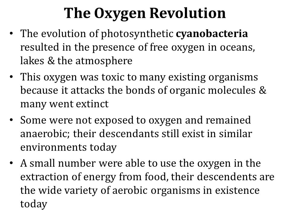 The Oxygen Revolution The evolution of photosynthetic cyanobacteria resulted in the presence of free oxygen in oceans, lakes & the atmosphere.