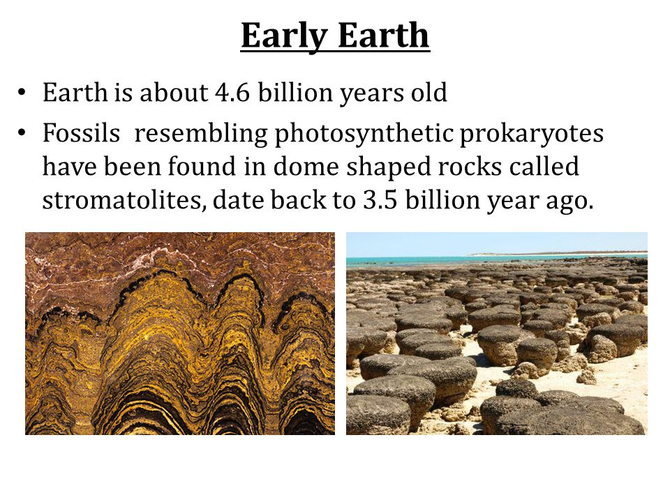 Early Earth Earth is about 4.6 billion years old