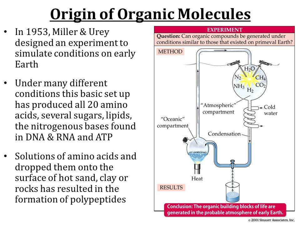 Origin of Organic Molecules