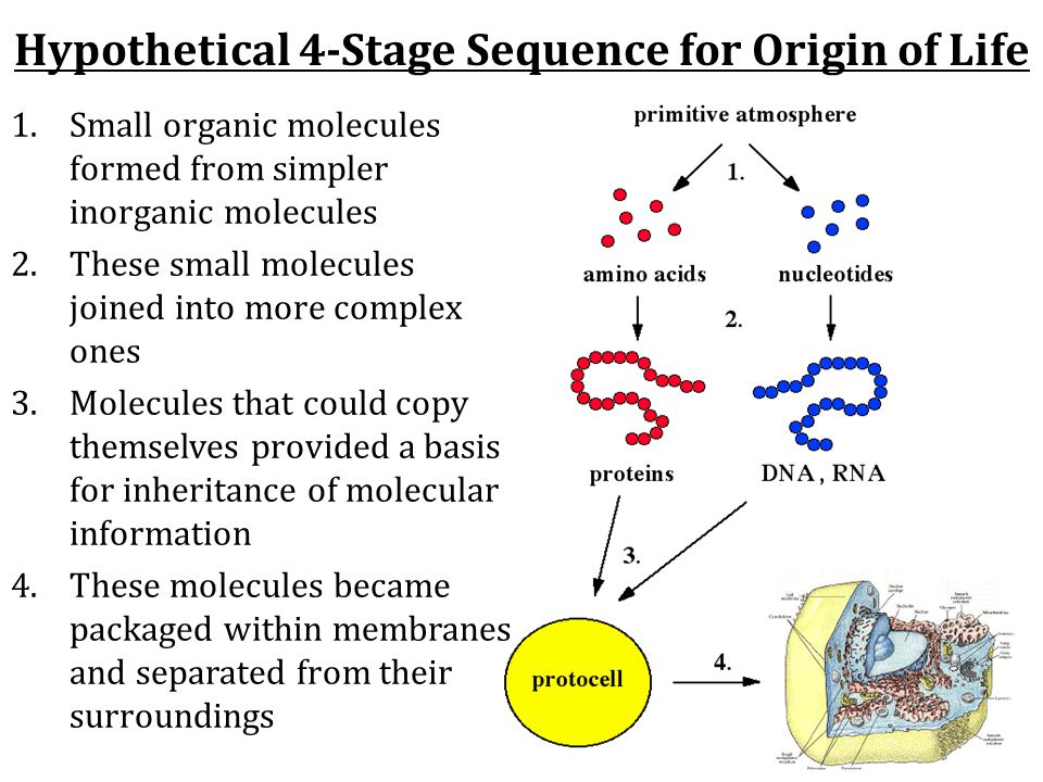 Hypothetical 4-Stage Sequence for Origin of Life