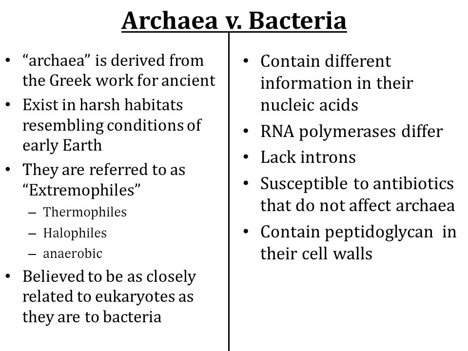 Archaea v. Bacteria archaea is derived from the Greek work for ancient. Exist in harsh habitats resembling conditions of early Earth.