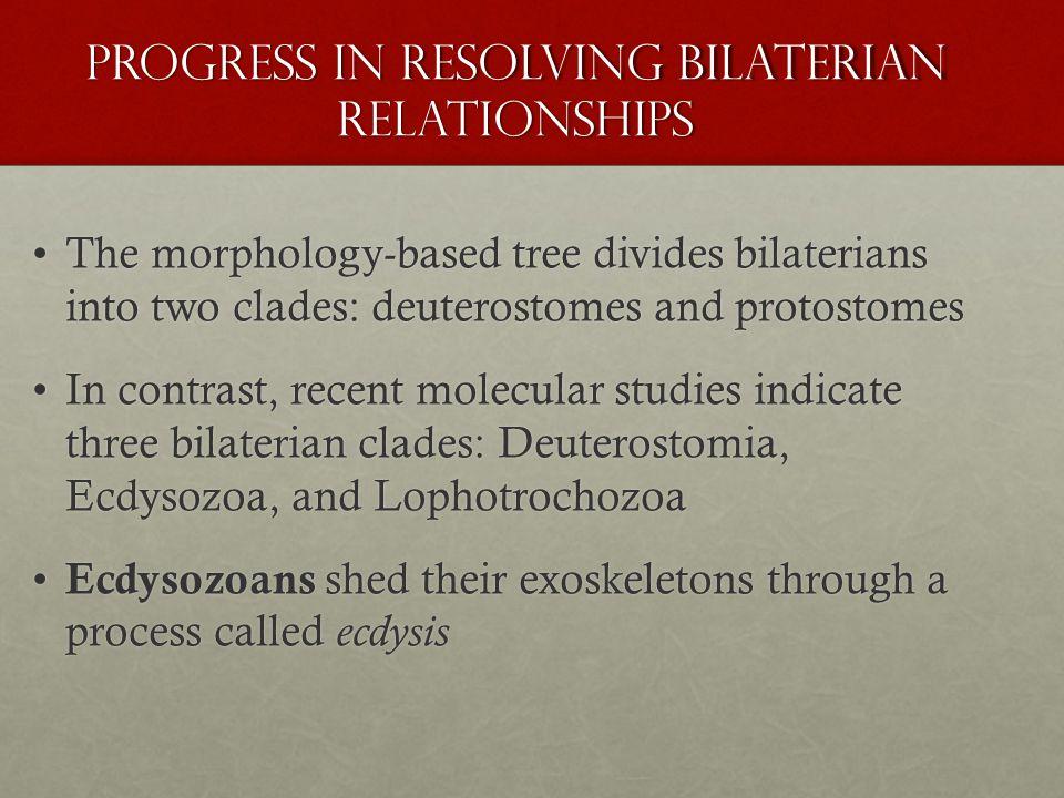 Progress in Resolving Bilaterian Relationships