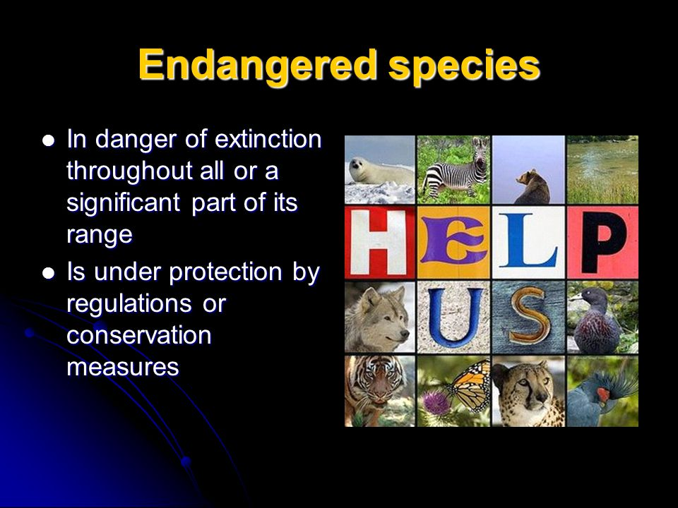Endangered species In danger of extinction throughout all or a significant part of its range.