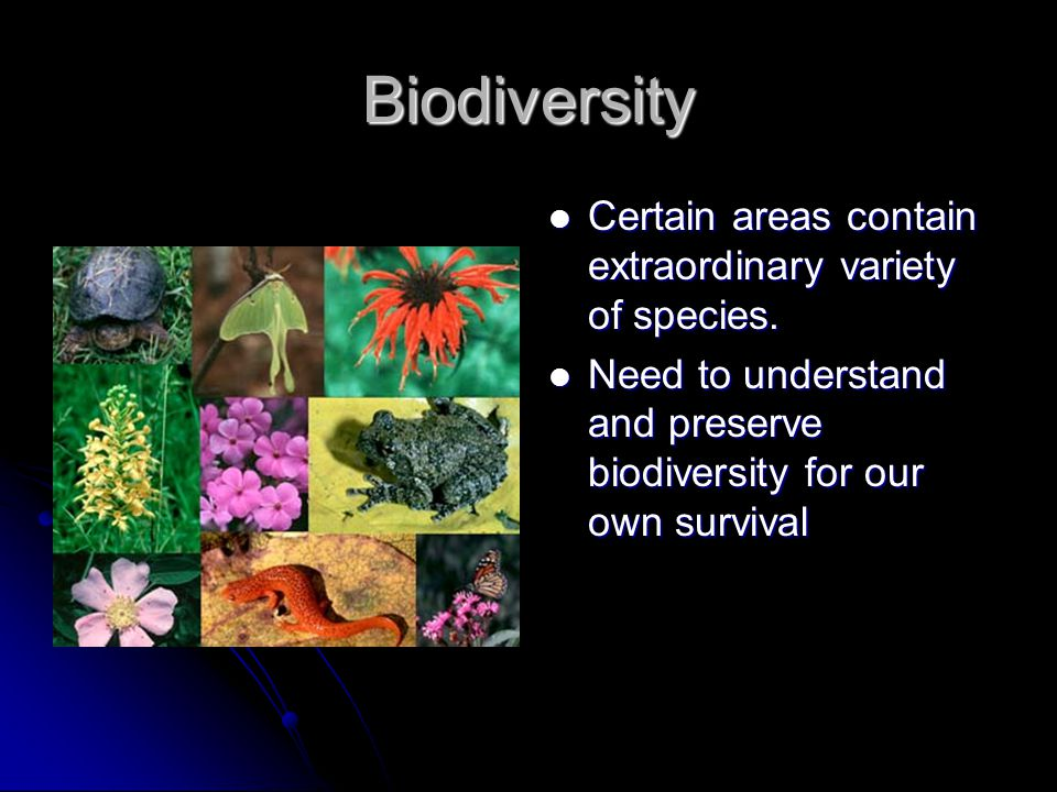 Biodiversity Certain areas contain extraordinary variety of species.