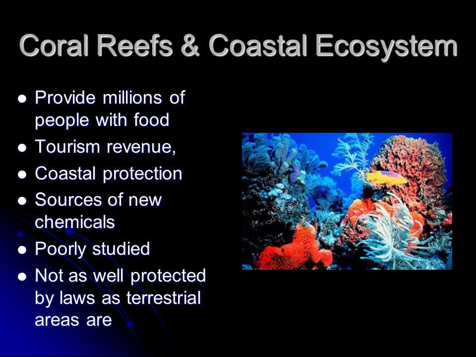 Coral Reefs & Coastal Ecosystem