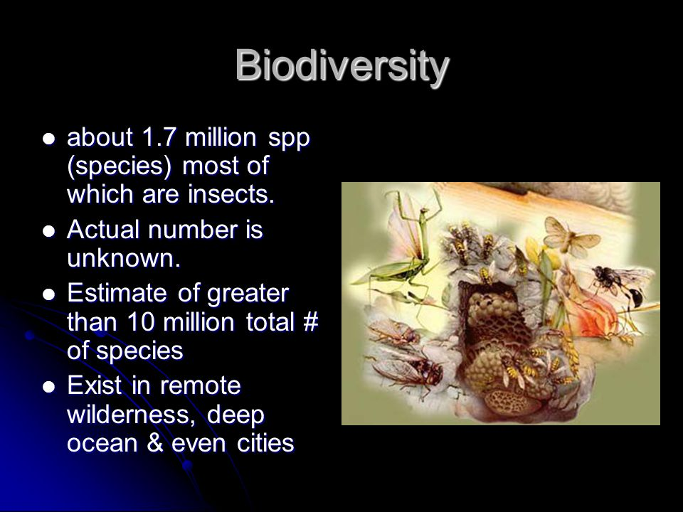 Biodiversity about 1.7 million spp (species) most of which are insects. Actual number is unknown.