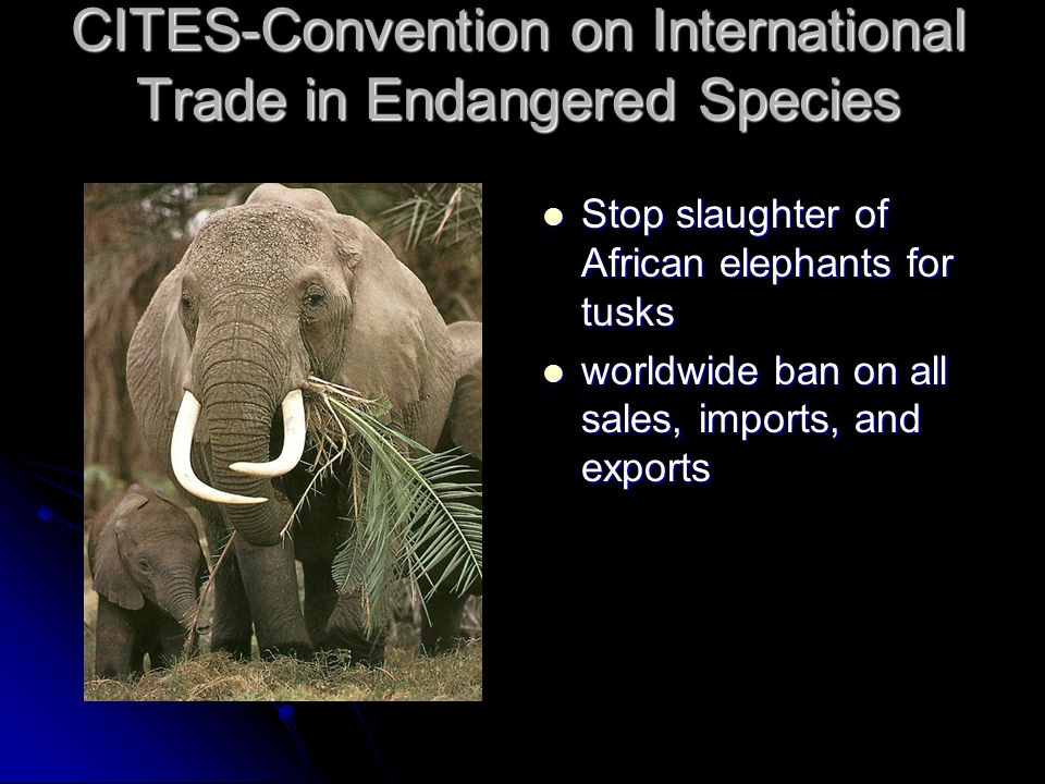 CITES-Convention on International Trade in Endangered Species