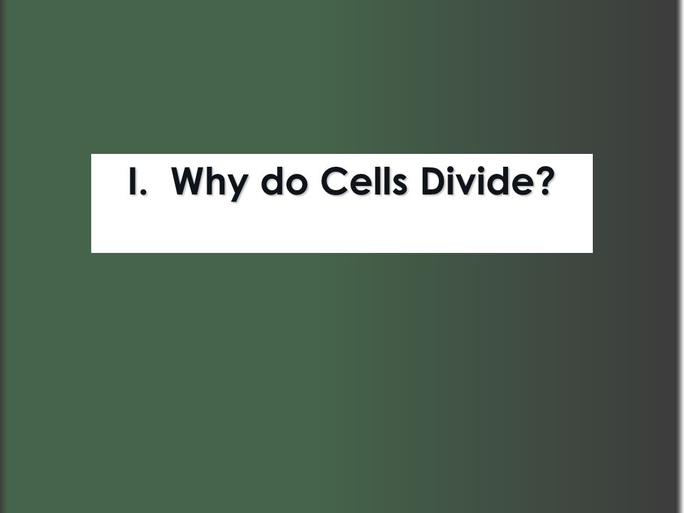 I. Why do Cells Divide