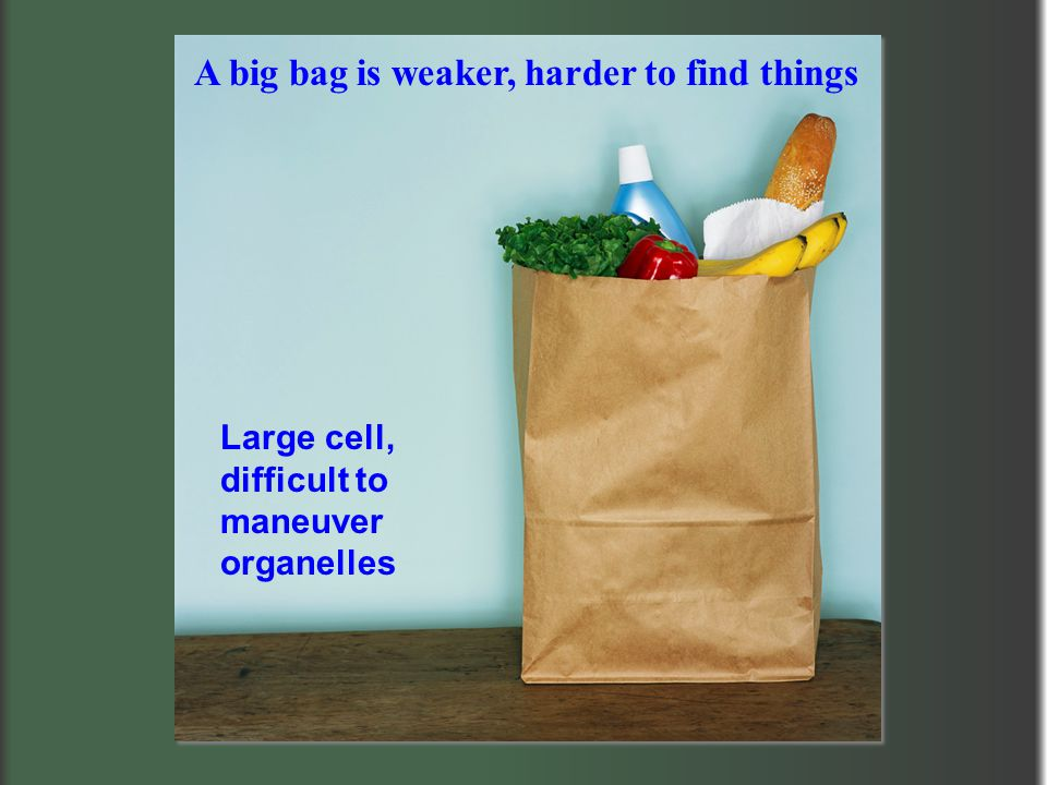 A big bag is weaker, harder to find things