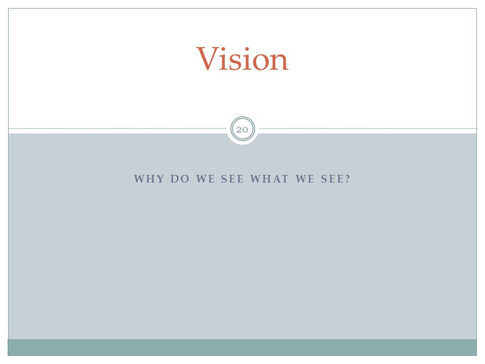 Vision Why do we see what we see