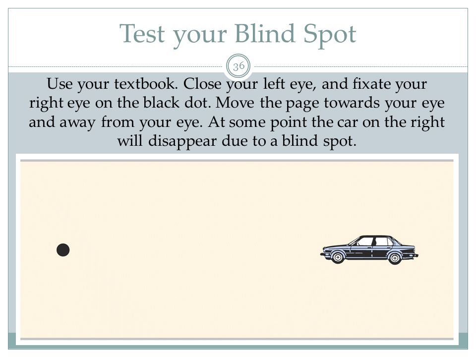 Test your Blind Spot
