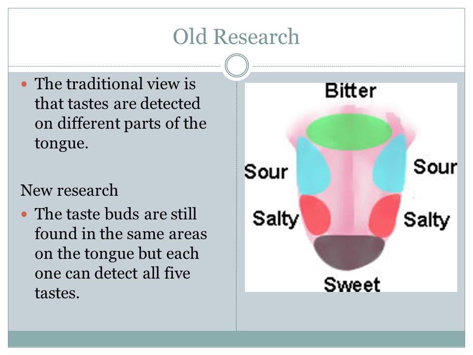 Old Research The traditional view is that tastes are detected on different parts of the tongue. New research.