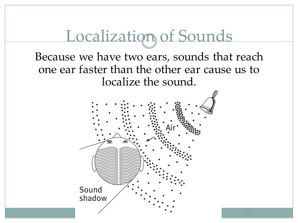 Localization of Sounds