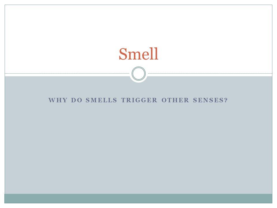 Why do smells trigger other senses