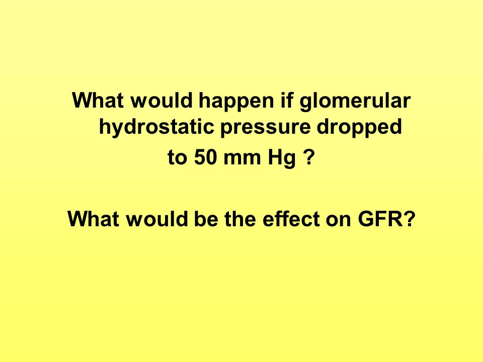 What would happen if glomerular hydrostatic pressure dropped