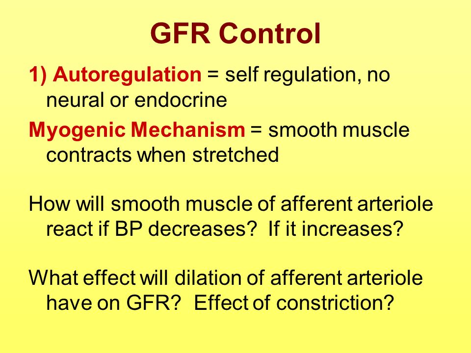 GFR Control 1) Autoregulation = self regulation, no neural or endocrine. Myogenic Mechanism = smooth muscle contracts when stretched.