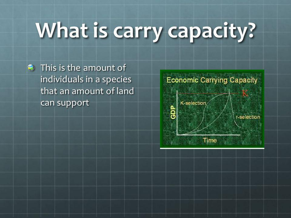 What is carry capacity.
