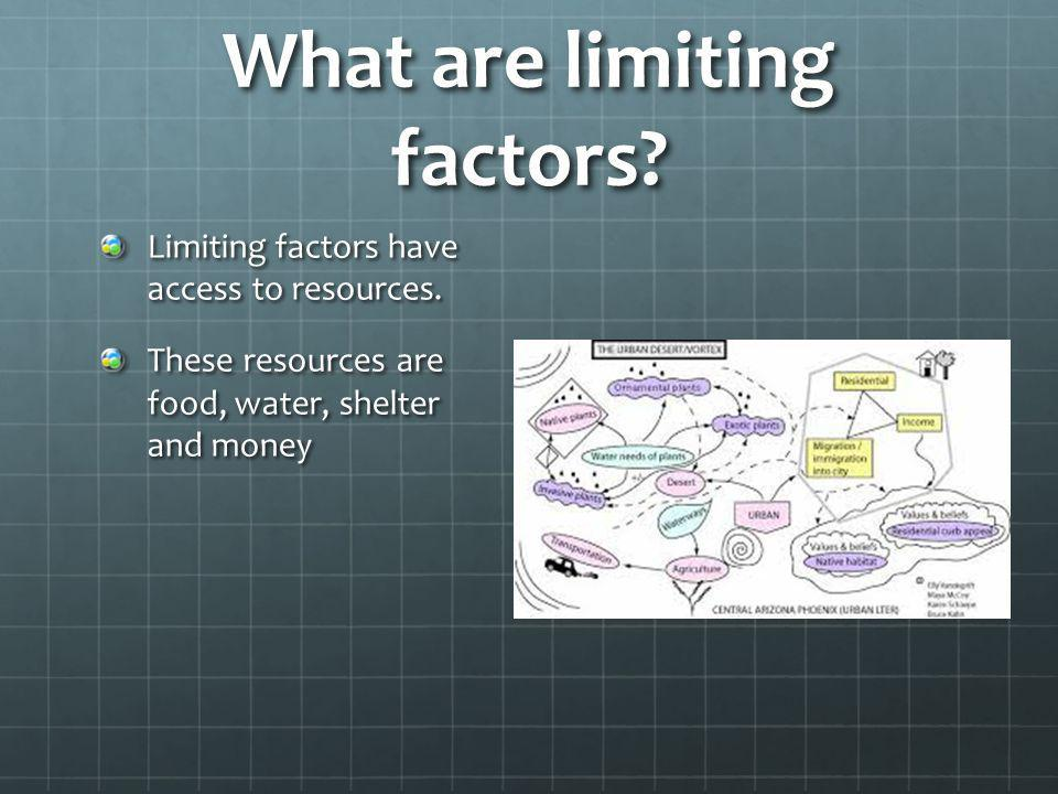 What are limiting factors