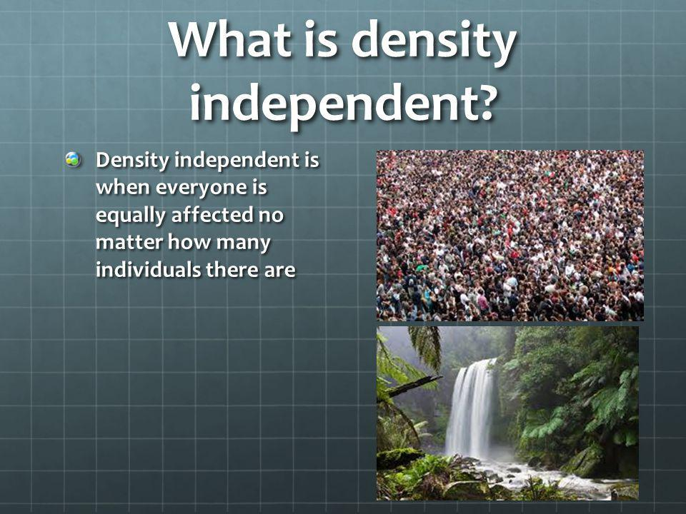 What is density independent