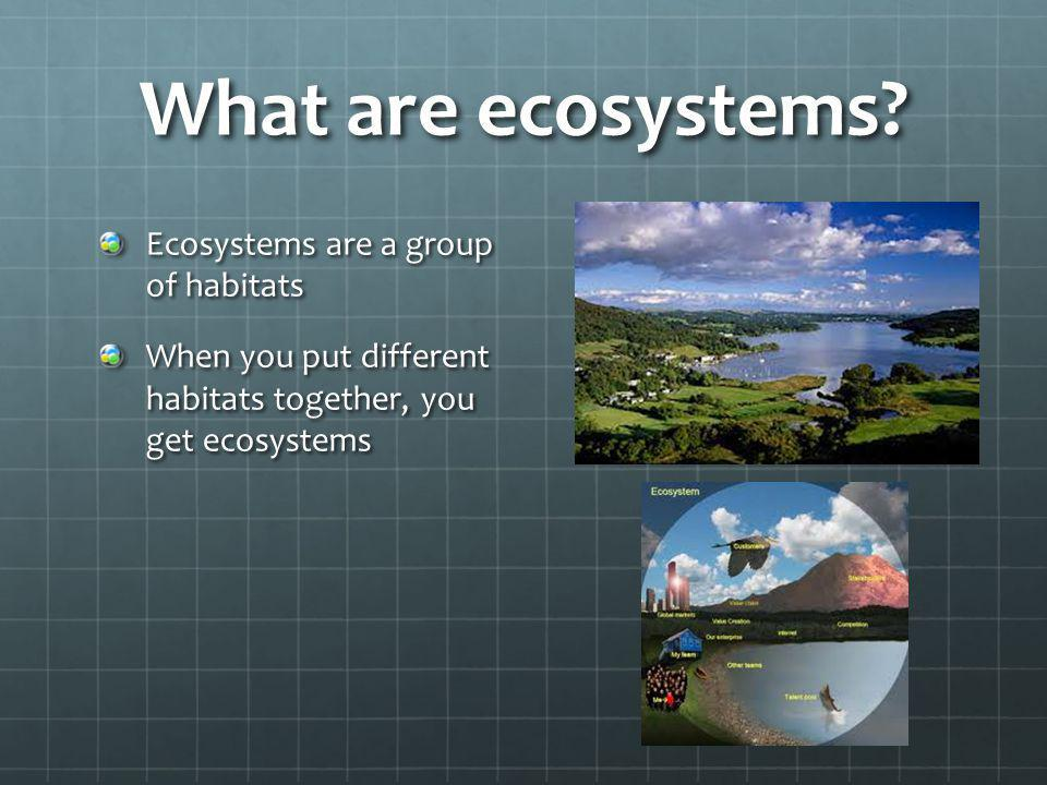 What are ecosystems Ecosystems are a group of habitats