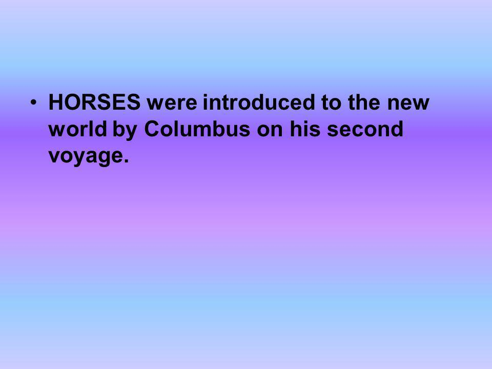 HORSES were introduced to the new world by Columbus on his second voyage.