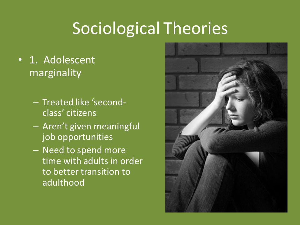 Sociological Theories