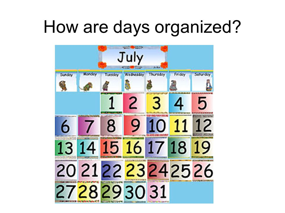 How are days organized
