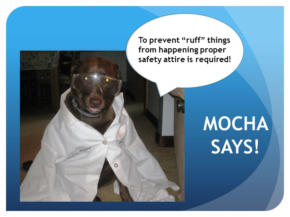 To prevent ruff things from happening proper safety attire is required!