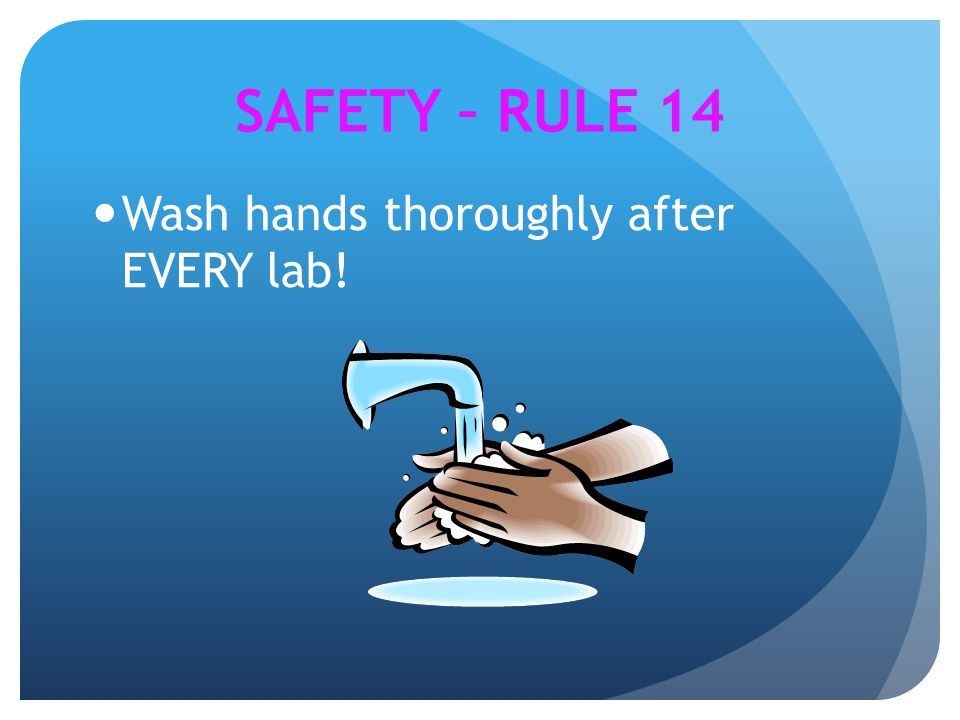 SAFETY – RULE 14 Wash hands thoroughly after EVERY lab!
