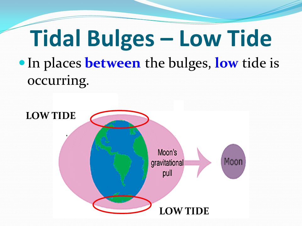 Tidal Bulges – Low Tide In places between the bulges, low tide is occurring. LOW TIDE LOW TIDE