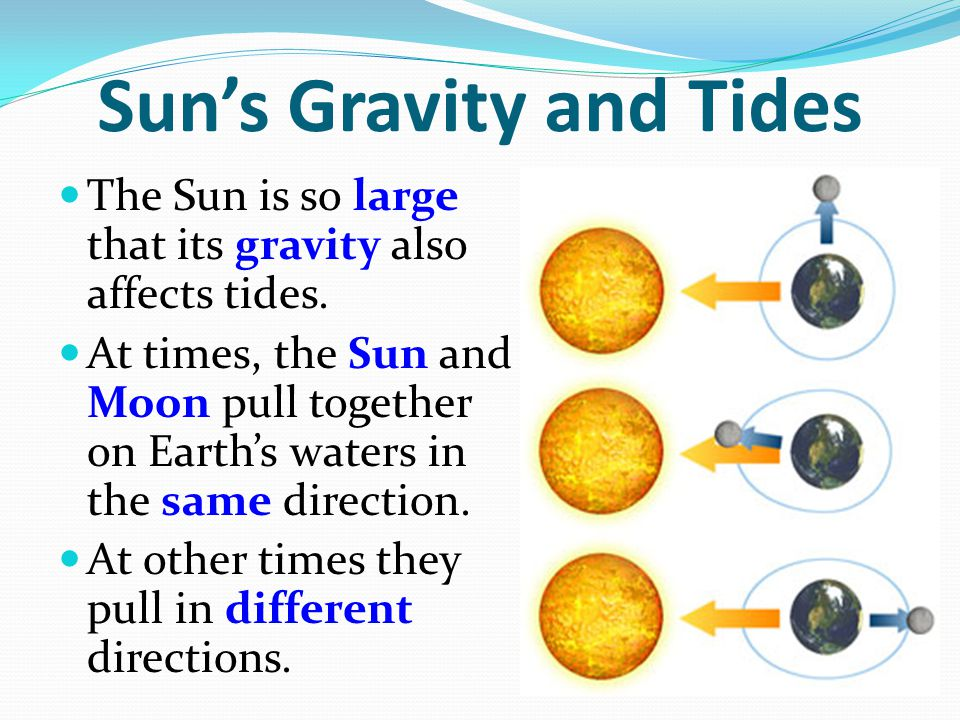 Sun's Gravity and Tides