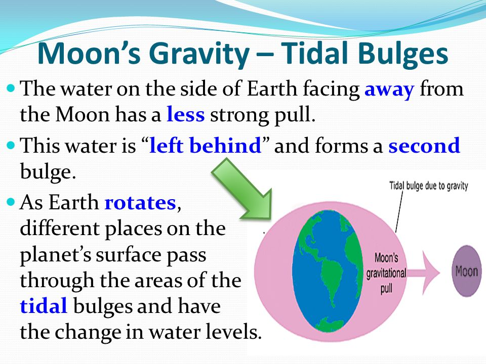 Moon's Gravity – Tidal Bulges