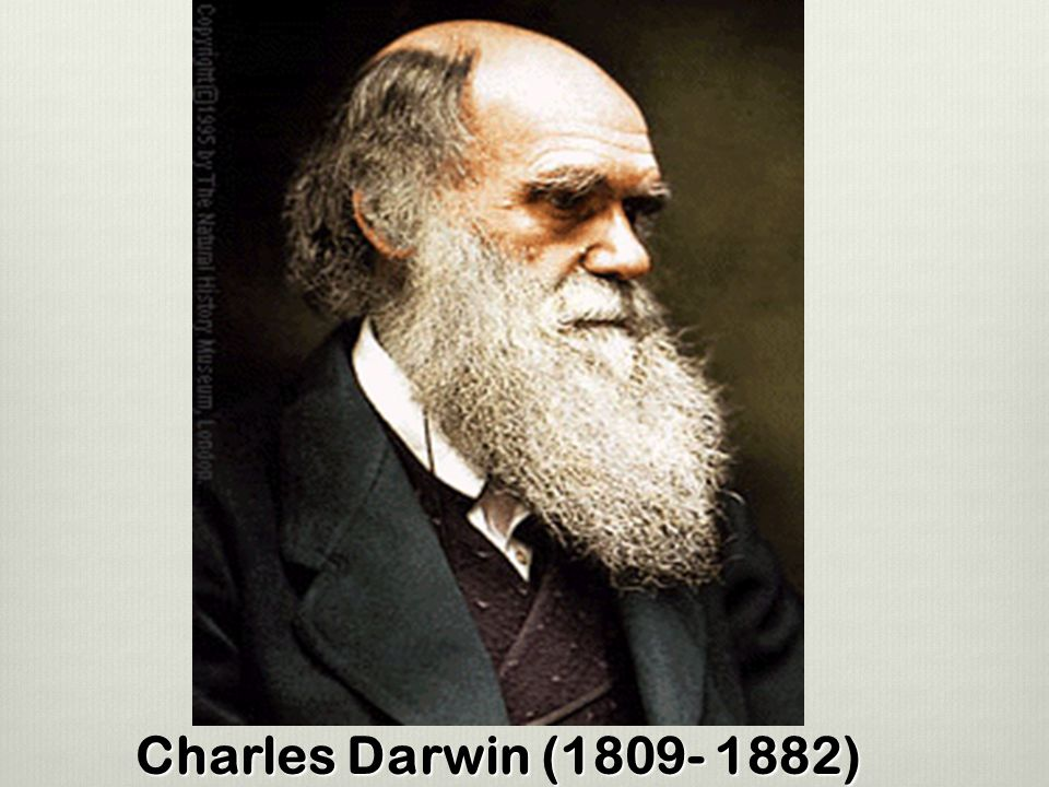 Image result for 1. Charles Darwin (1809–1882)