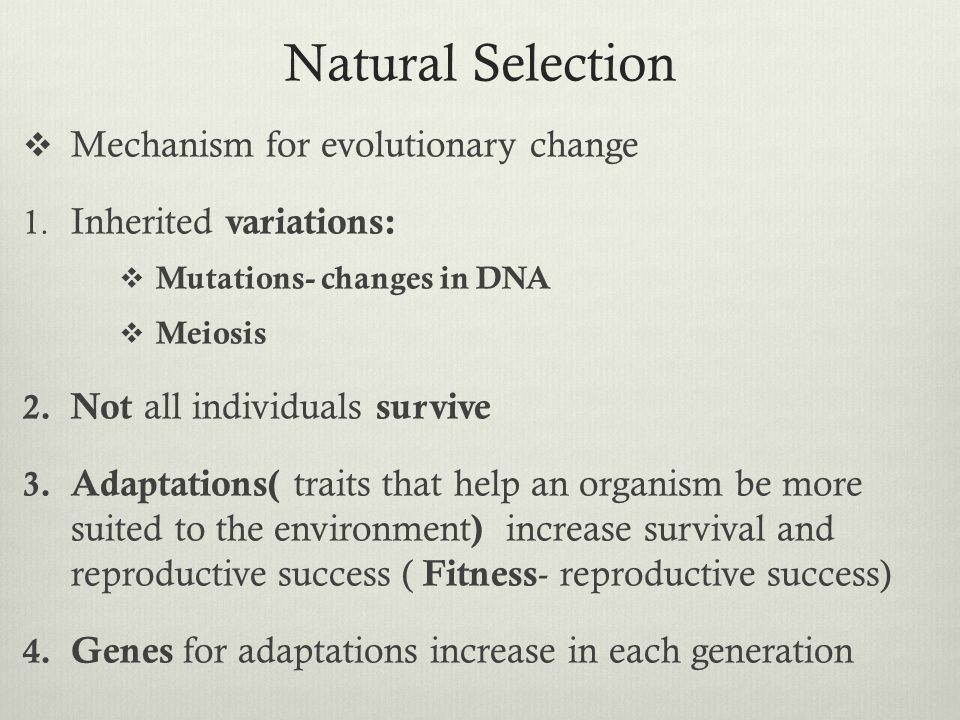 Natural Selection Mechanism for evolutionary change