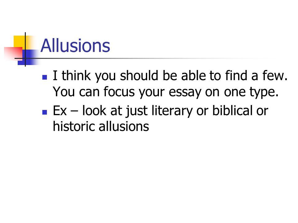 Allusions I think you should be able to find a few. You can focus your essay on one type.