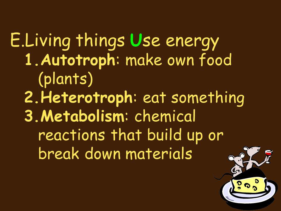 E.Living things Use energy