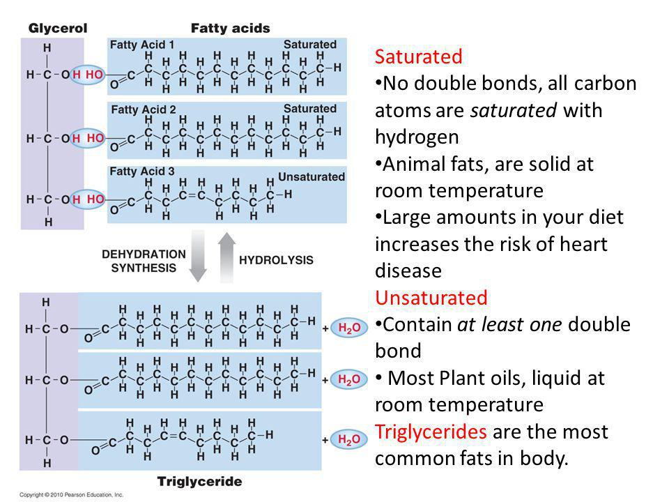 Saturated No double bonds, all carbon atoms are saturated with hydrogen. Animal fats, are solid at room temperature.