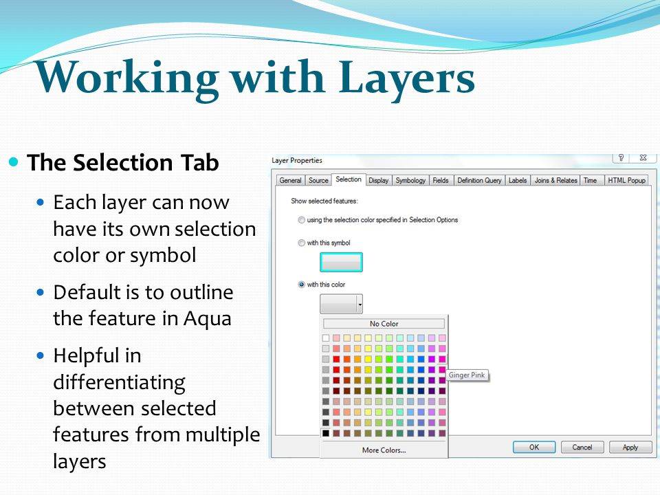 Working with Layers The Selection Tab