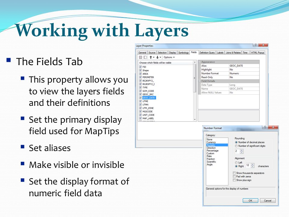 Working with Layers The Fields Tab
