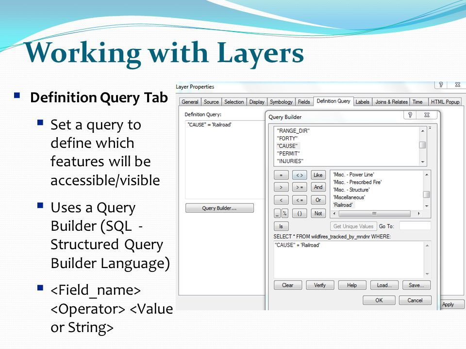 Working with Layers Definition Query Tab