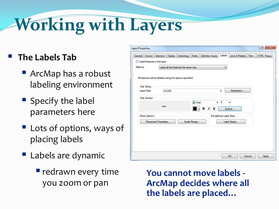 Working with Layers The Labels Tab