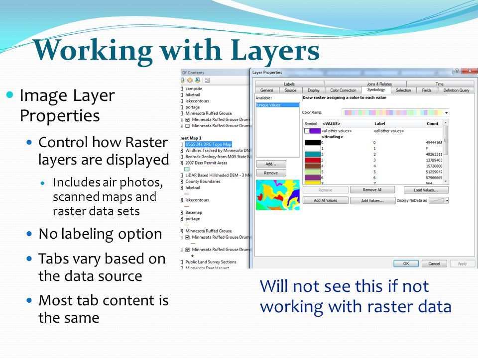 Working with Layers Image Layer Properties