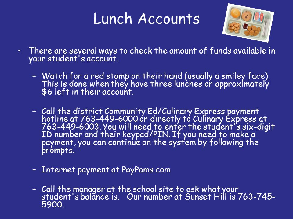 Lunch Accounts There are several ways to check the amount of funds available in your student s account.