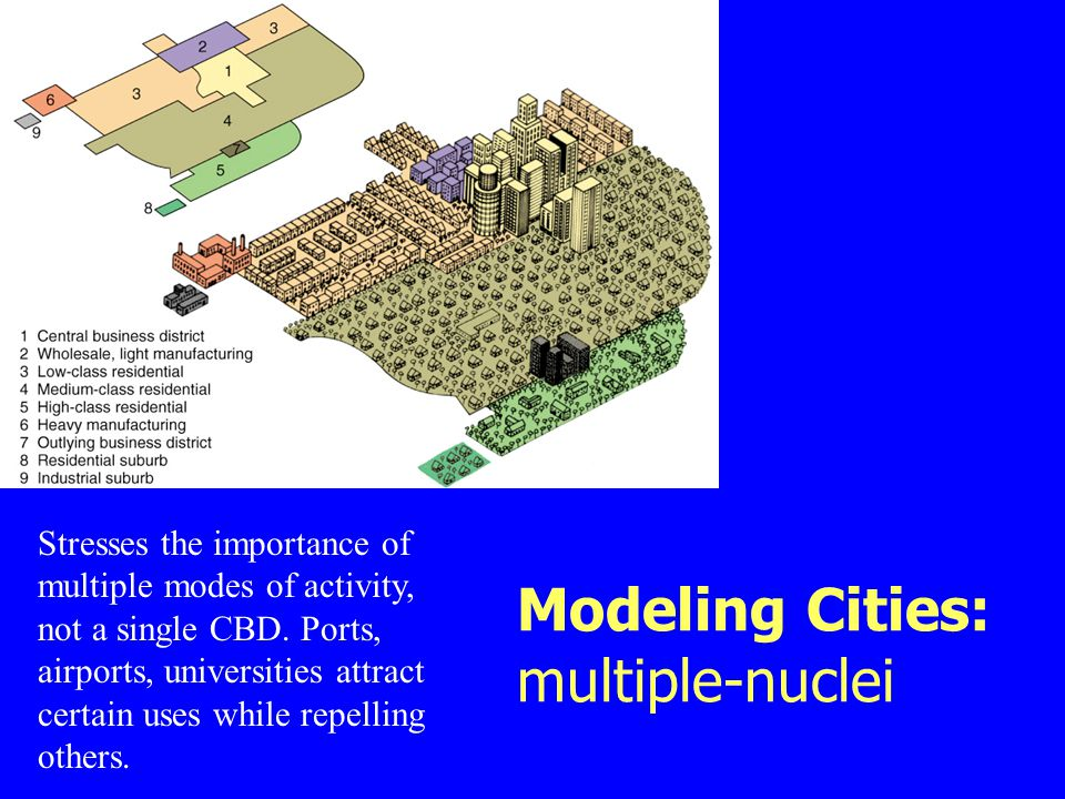 Modeling Cities: multiple-nuclei