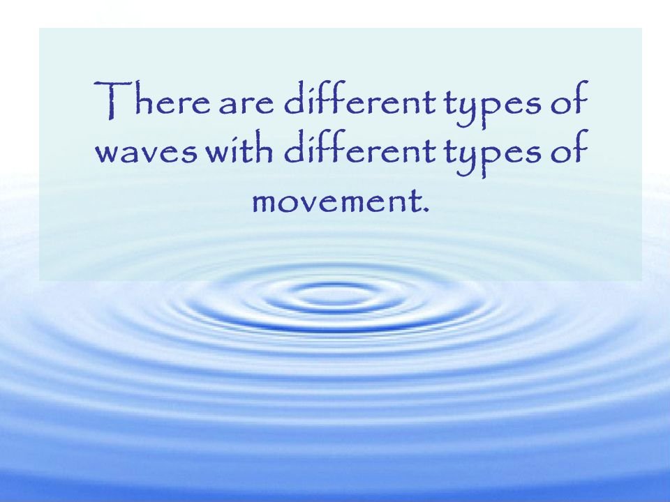 There are different types of waves with different types of movement.