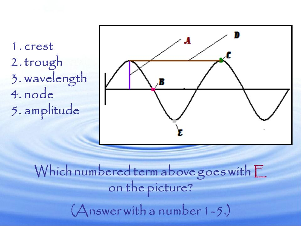 Which numbered term above goes with E (Answer with a number 1-5.)