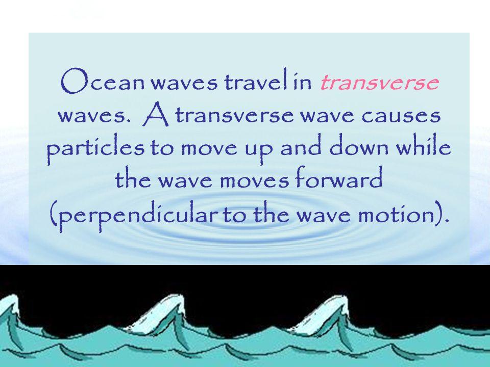 Ocean waves travel in transverse waves